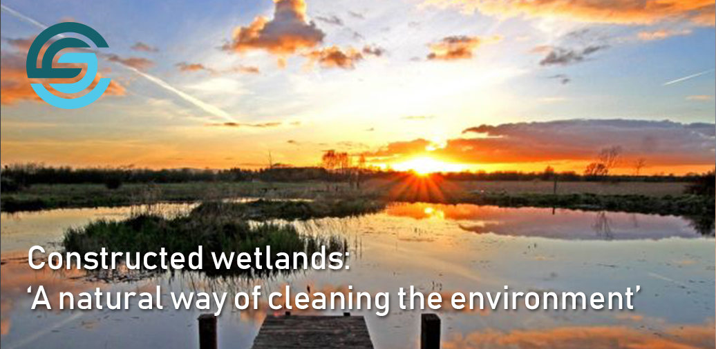 Constructed wetlands: 'A natural way of cleaning the environment'