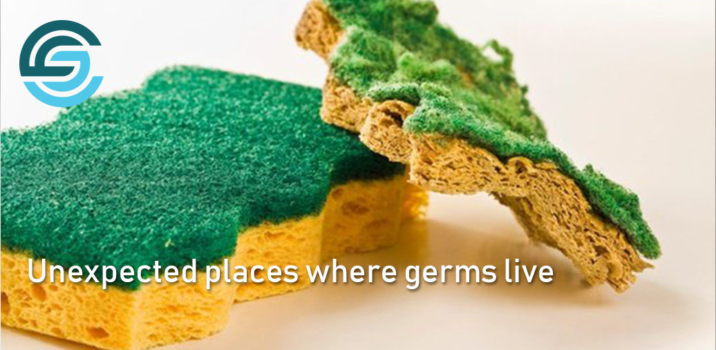 Here are the unexpected places where germs live